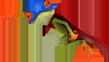 Illustration eines Froschs, der durch den oberen Bildbereich der Website fliegt