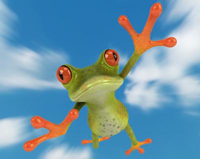 """Ein """"Flyer"""" - Ein fliegender Frosch"""