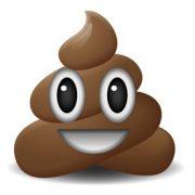 Ein lachender Haufen Scheiße - Poop-Smiley - Emoticon